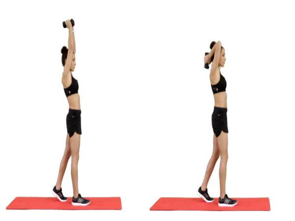 Top 5 bài tập gym tăng cơ tay sau cho nữ cực hiệu quả