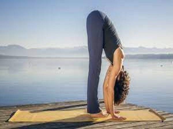 Bài tập yoga cho người đau vai gáy hiệu quả tại nhà